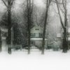 house behind trees in snow